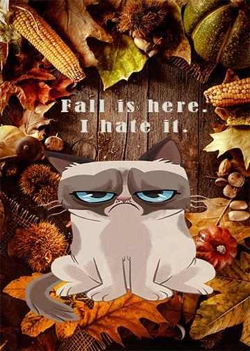 Grumpy Cat Hates Fall - Doorfoto Door Decor