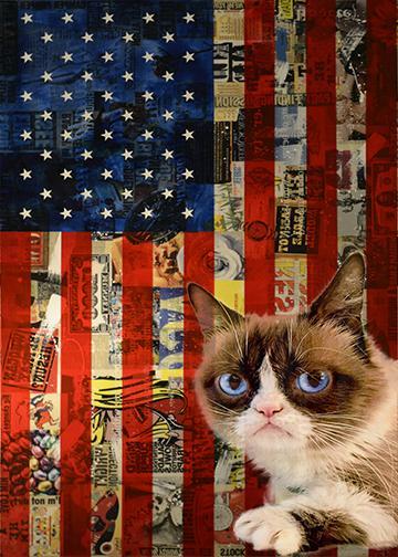 Grumpy Cat Decorated Flag - Doorfoto Door Decor