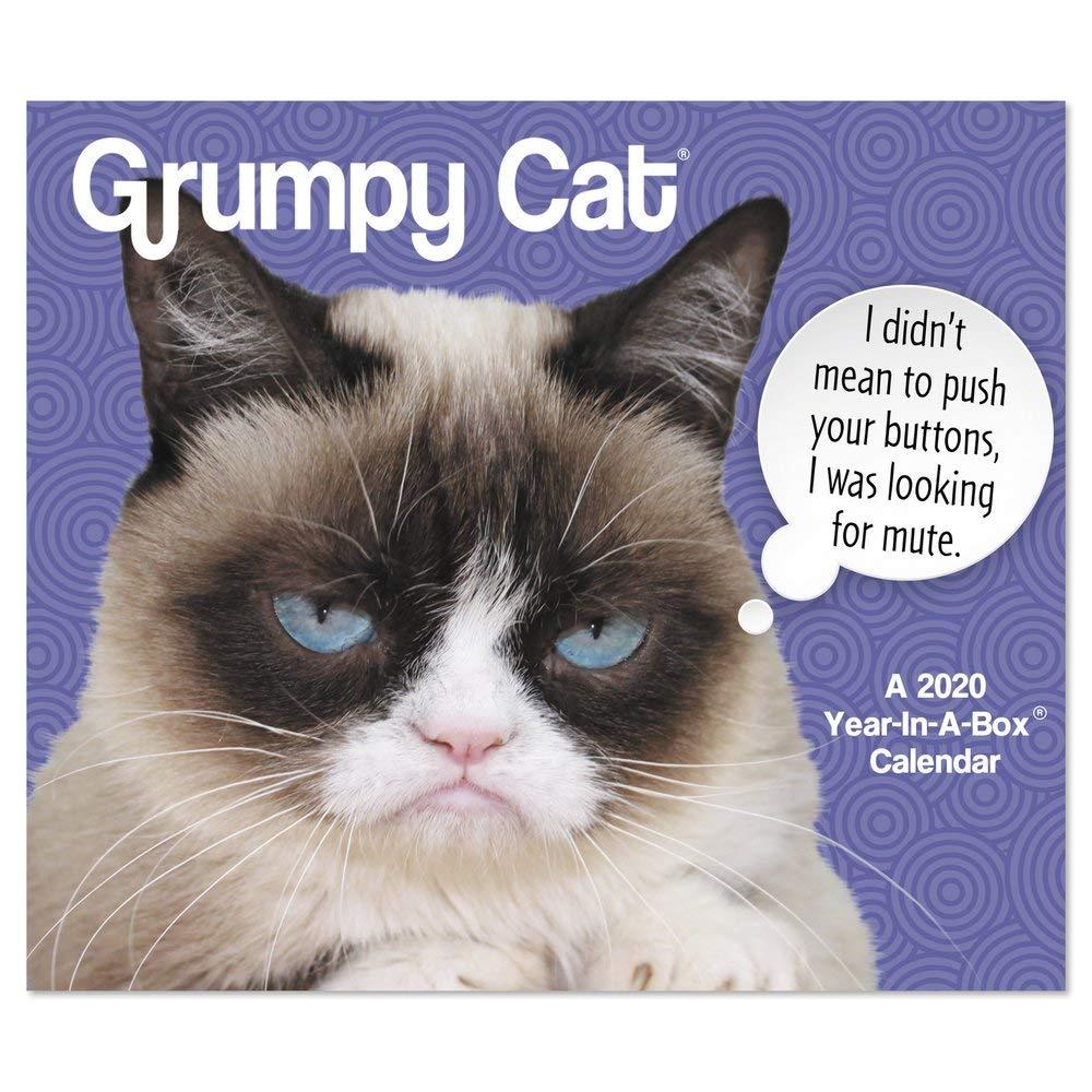 Grumpy Cat Year-in-a-Box 2020 Calendar