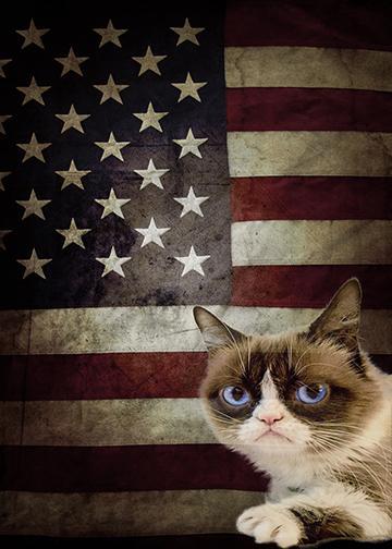 Grumpy Cat Flag - Doorfoto Door Decor