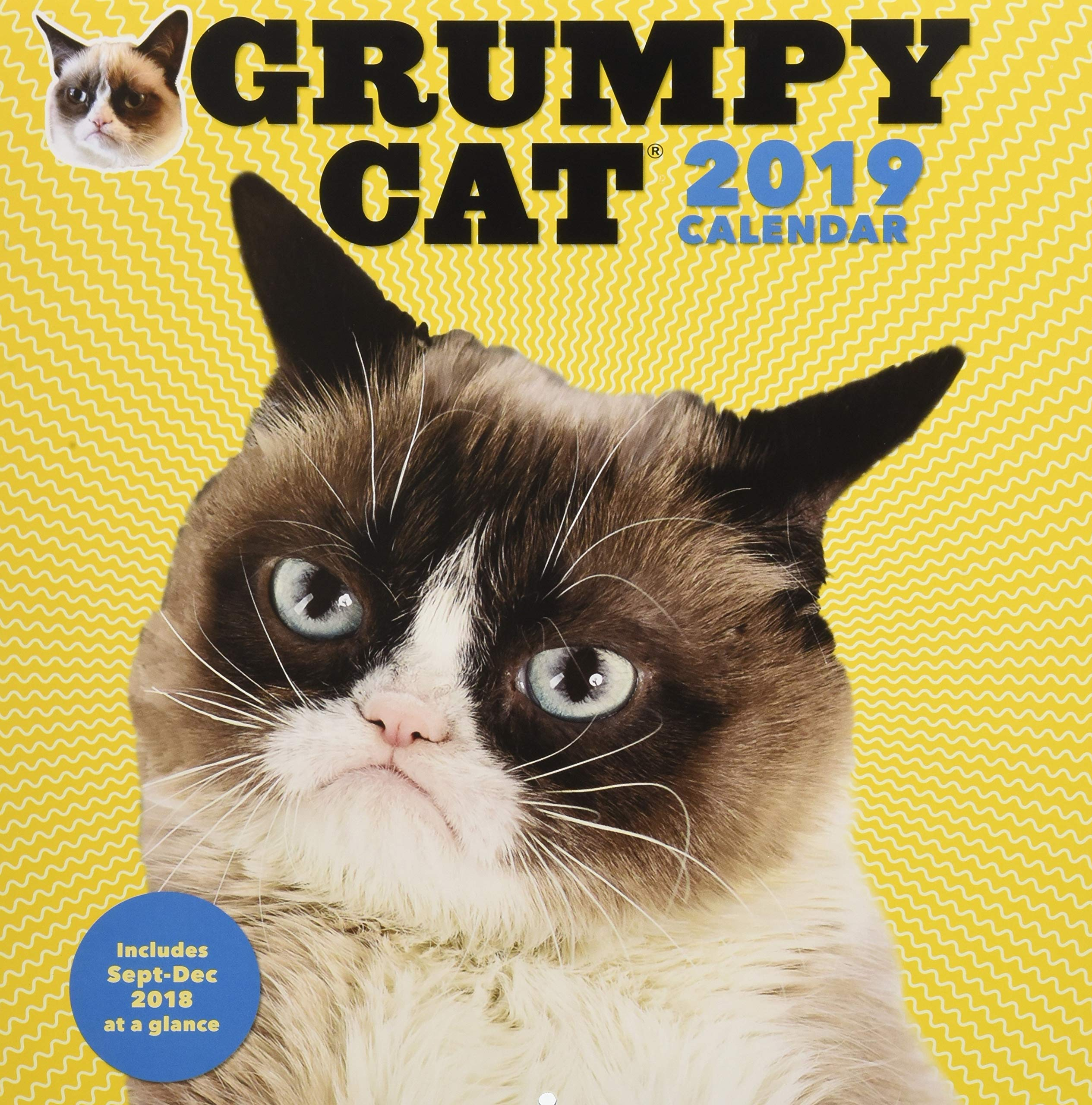 Grumpy Cat 2019 Wall Calendar