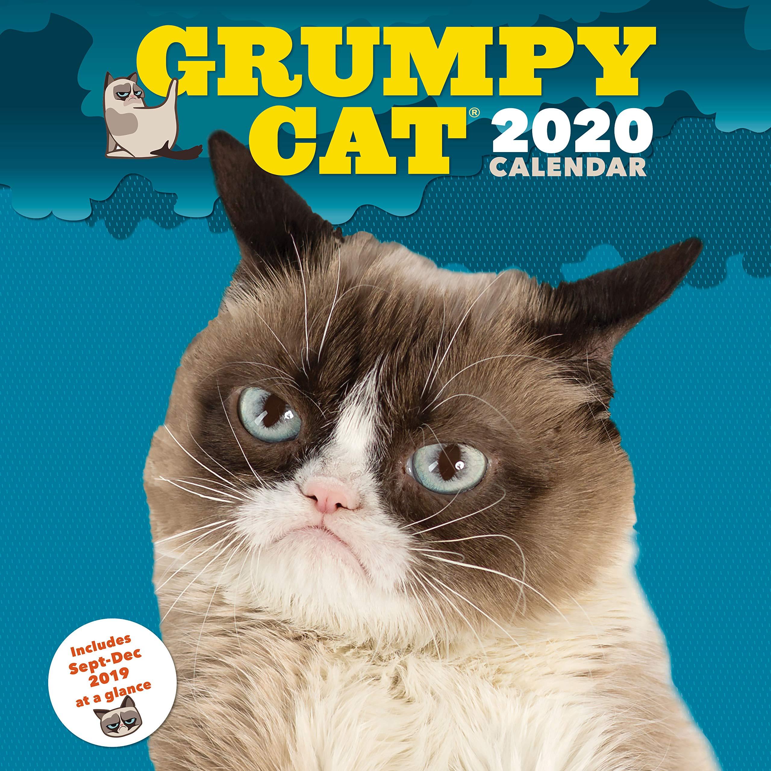 Grumpy Cat 2020 Calendar