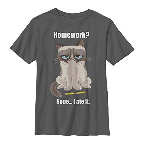 Grumpy Cat My Pet Ate My Homework Boys Graphic T Shirt - Fifth Sun
