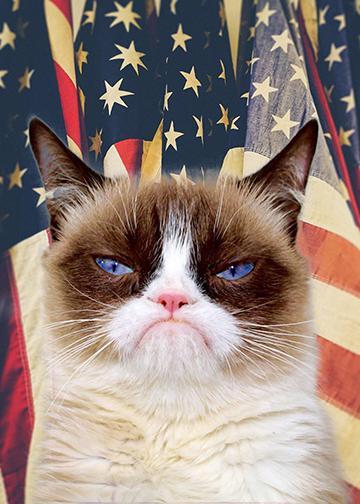 Patriotic Grumpy Cat - Doorfoto Door Decor