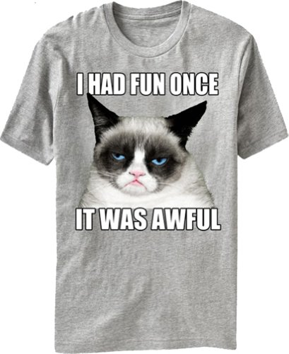 Grumpy Cat - I Had Fun Once, It Was Awful - T-shirt
