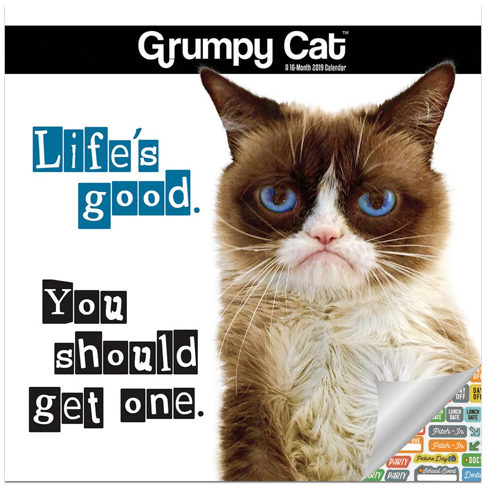 Grumpy Cat Calendar 2019 Set - Deluxe 2019 Grumpy Cat Mini Calendar with Over 100 Calendar Stickers