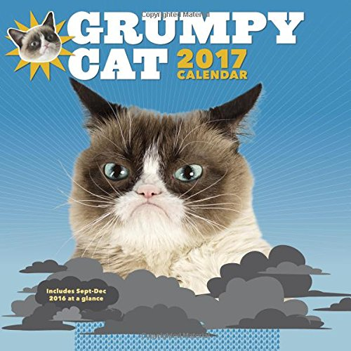 Grumpy Cat 2017 Wall Calendar
