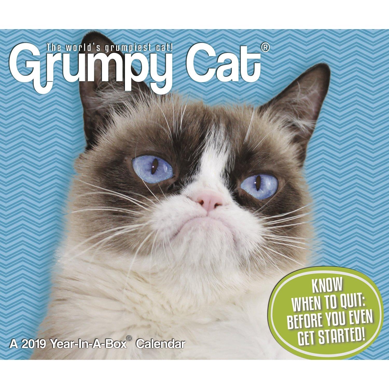 Grumpy Cat Year-in-a-Box 2019 Calendar