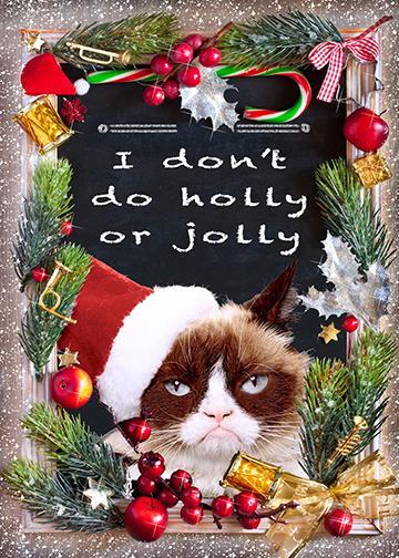 Jolly Grumpy Cat - Doorfoto Door Decor